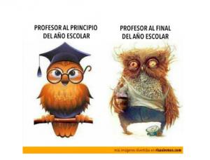profesor-fin-curso-bis